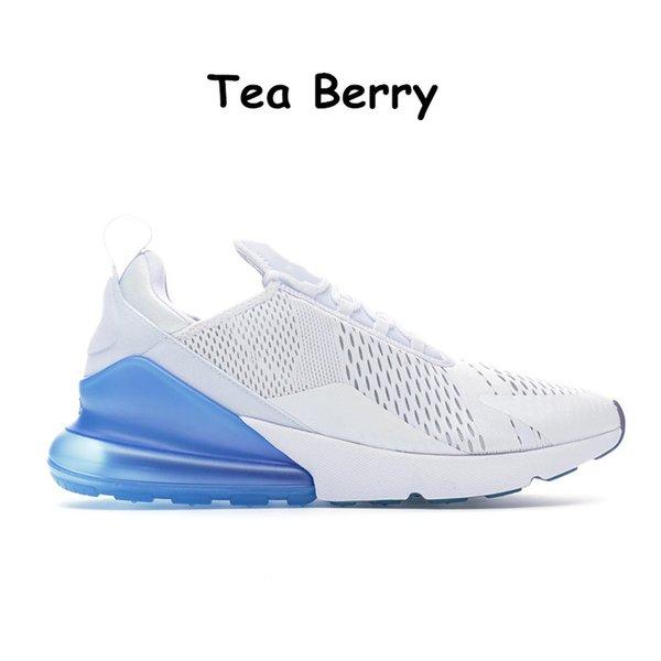 10 Tea Berry