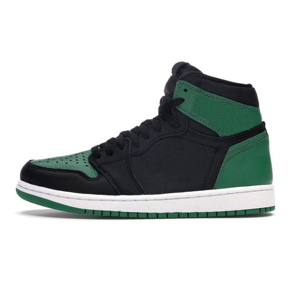 1s сосна зеленый