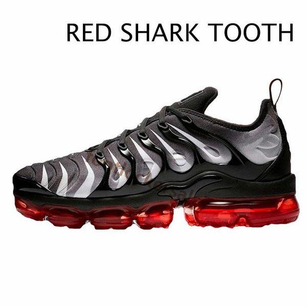 7-Kırmızı Köpekbalığı Tooth-