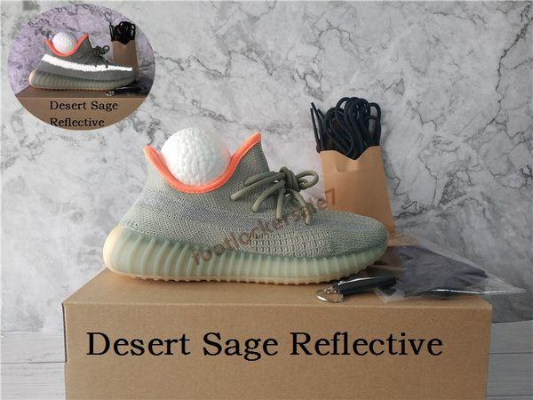 13-Desert Sábio Reflective