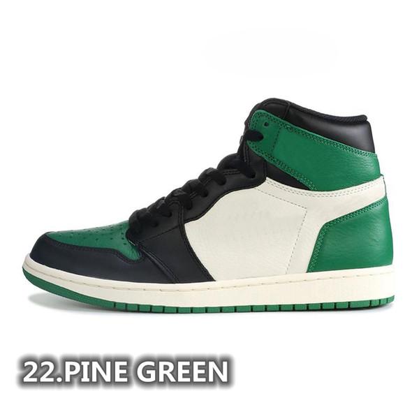37. Сосна зеленая