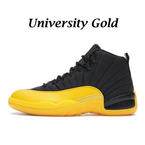 Üniversite Altın