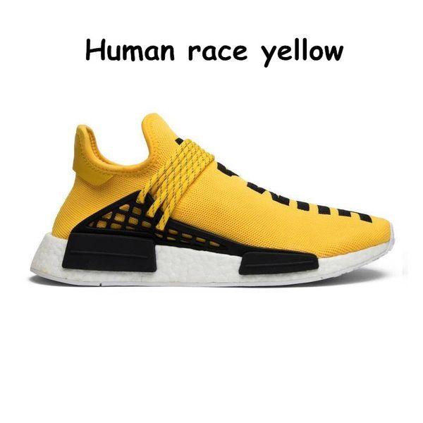 31 أصفر