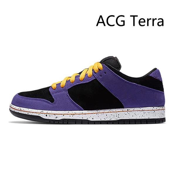 ACG Terra