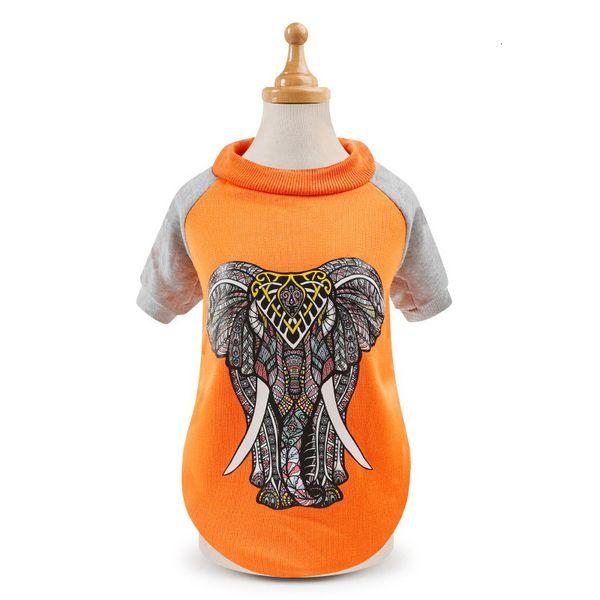 Éléphant orange