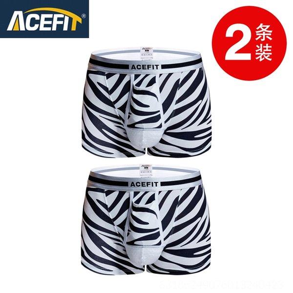 P006 + Zebra Zebra