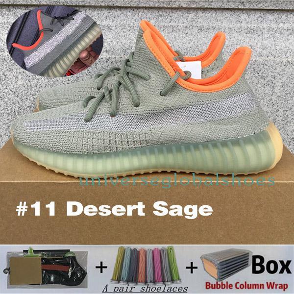 # 11 désert sage