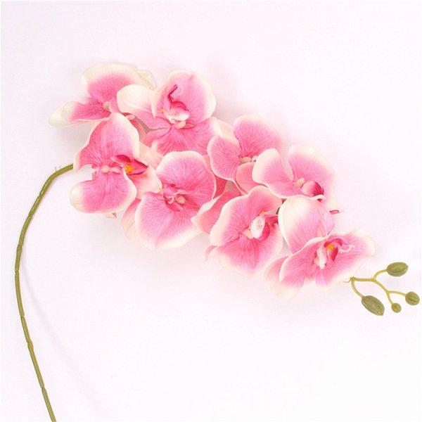 Profondo rosa