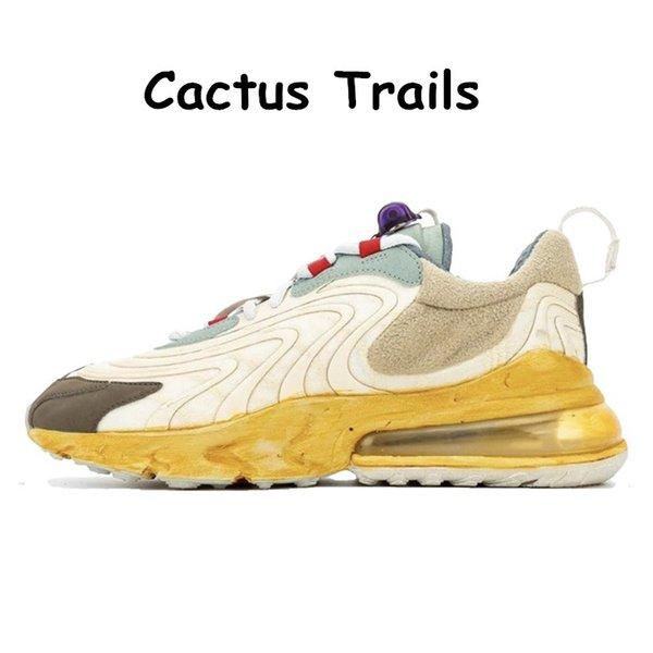 32 Cactus Trails