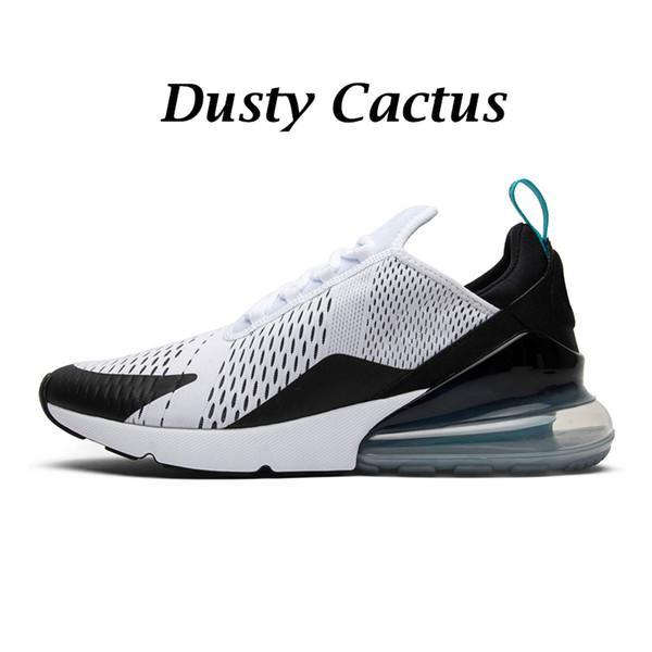 Пыльный кактус