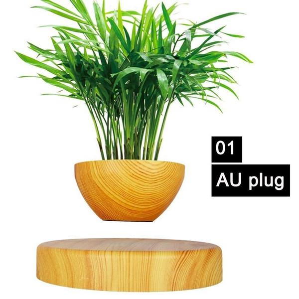 01 AU plug