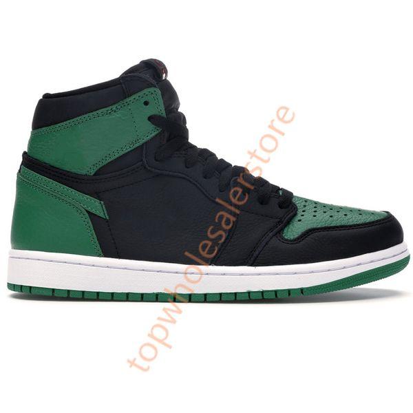 1s- ارتفاع الصنوبر الأخضر الأسود
