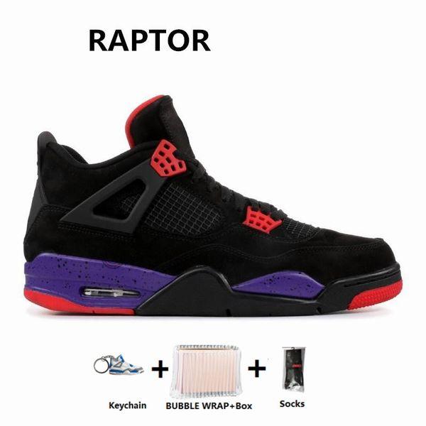 -Raptors-