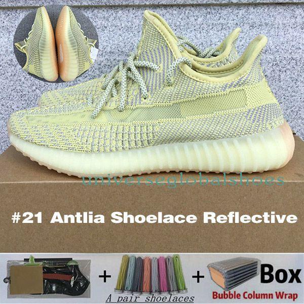 # 21 antlia shoelace réfléchissant