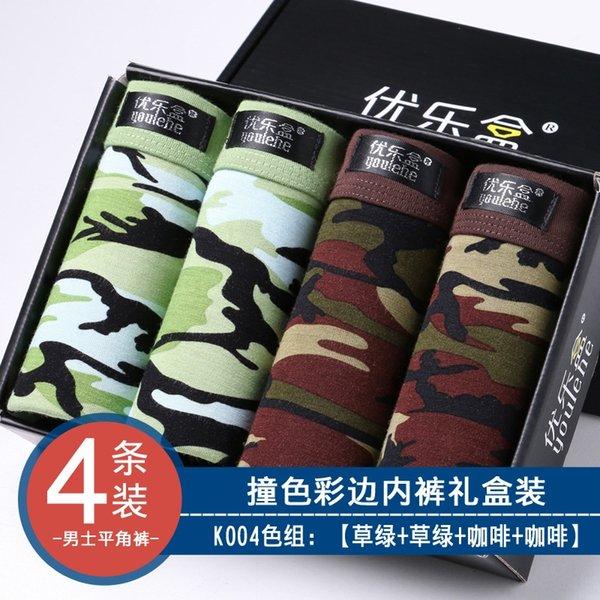 K004-2 hierba verde 2 del café