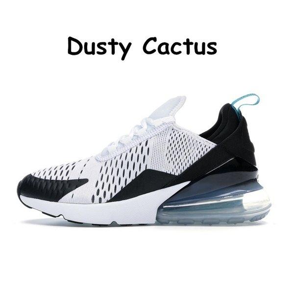 8 dusty cactus