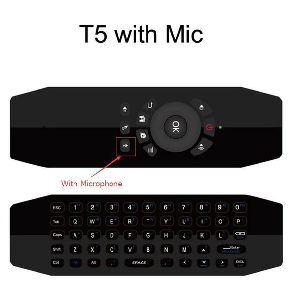 T5 With Mic