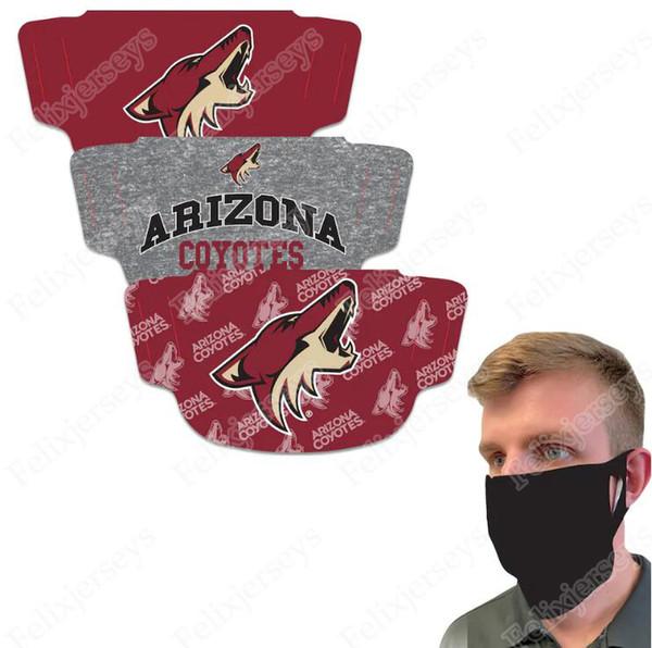 Arizona coyotes-orden de la mezcla