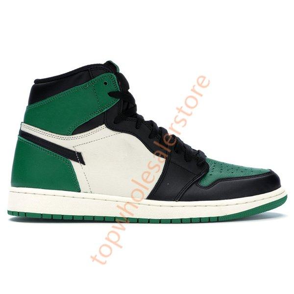 1s- الصنوبر الأخضر
