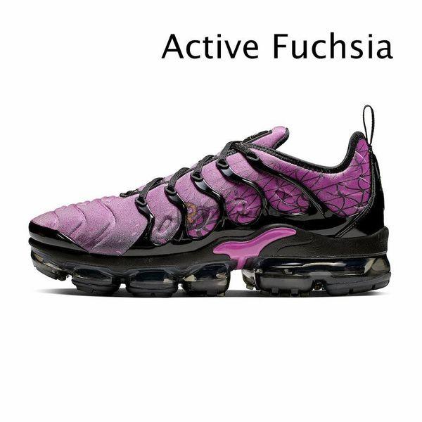 Fuchsia active
