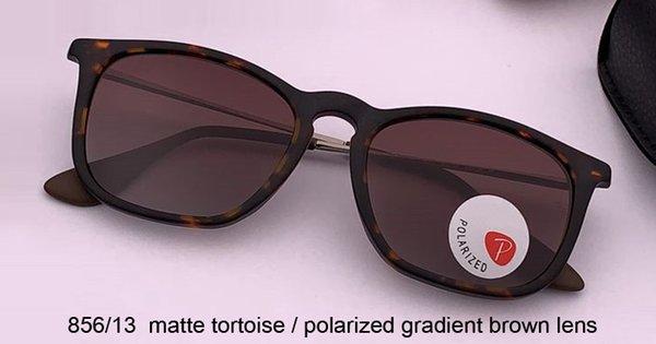 tortuga mate / gradiente polarizado marrón