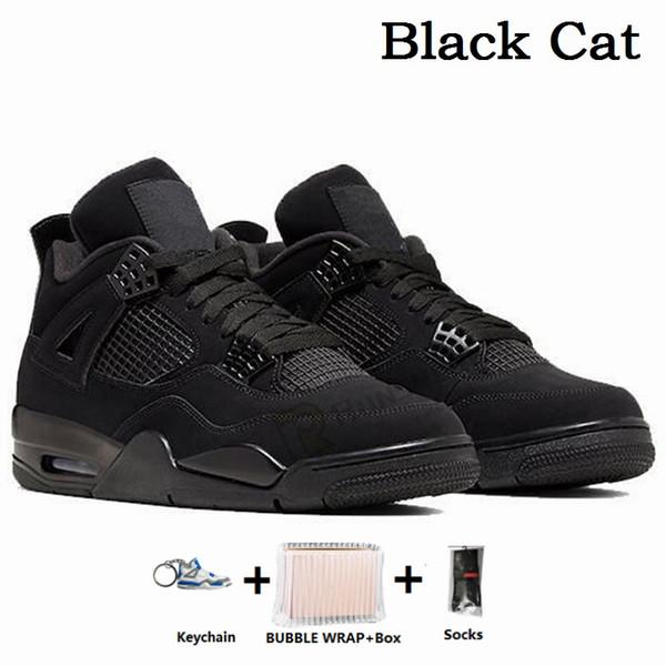 -Черный кот