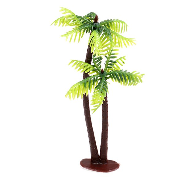 Hindistan cevizi ağacı 1pc