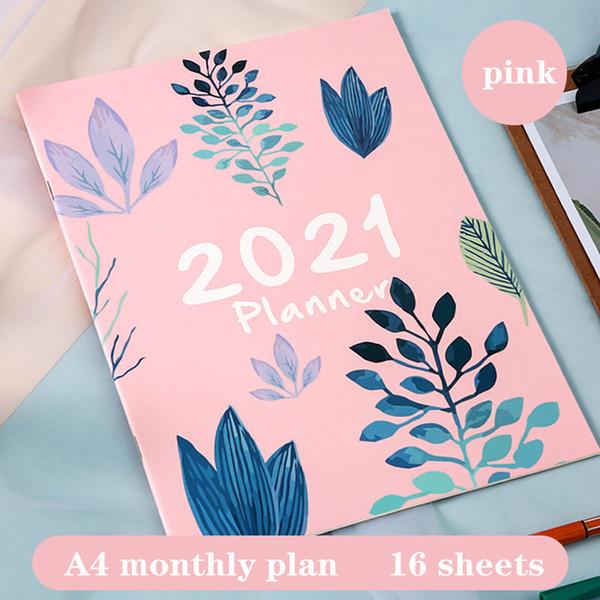 2021 rosa A4 China