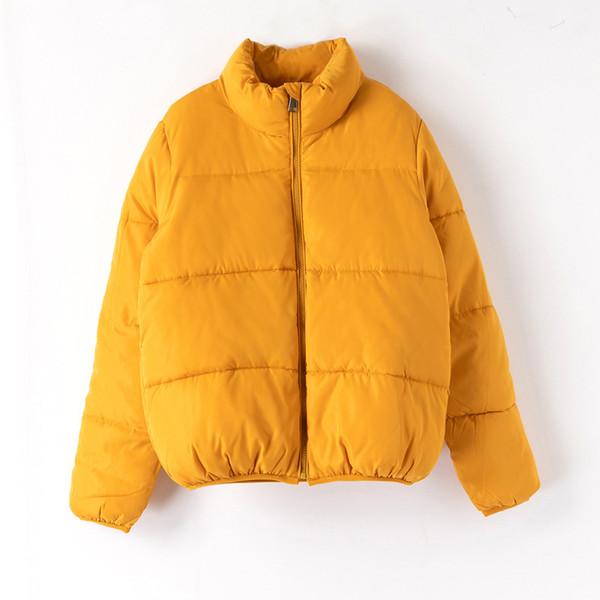 Ginger yellow jacket