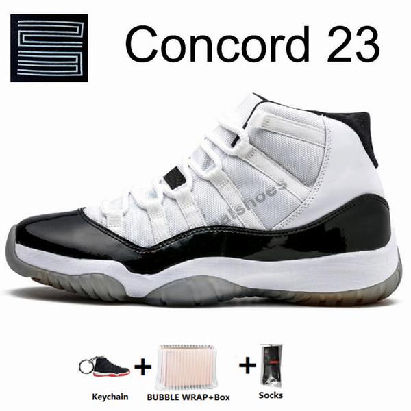 11S-كونكورد مرتفع 23