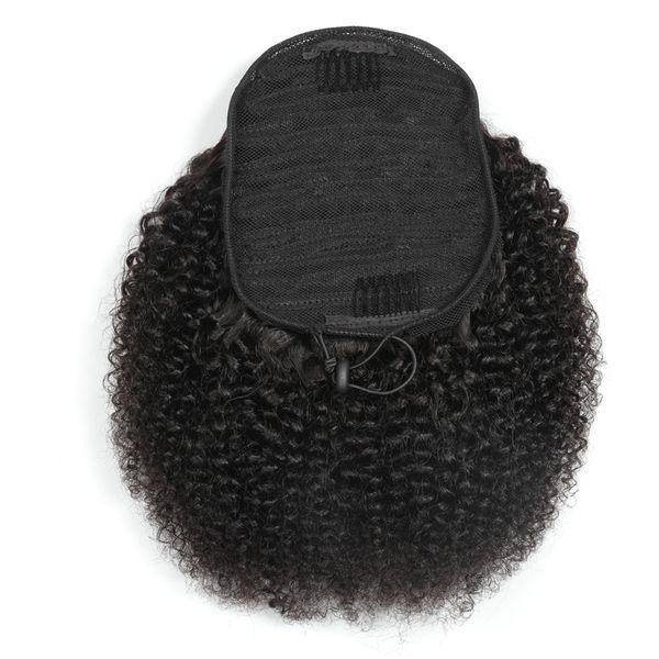 Afro Kinky Curly Bonytail