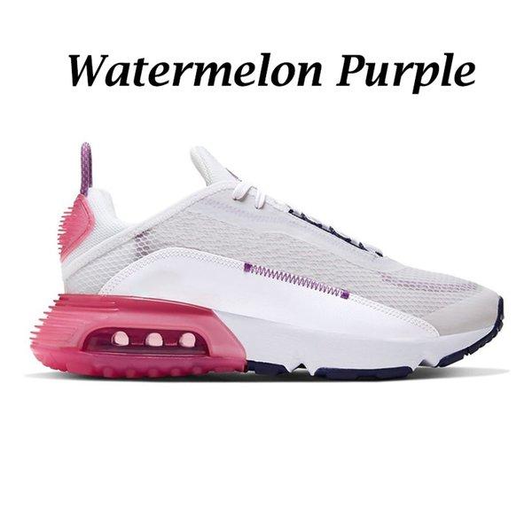 Watermelon Purple