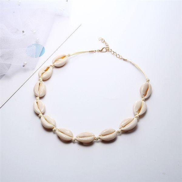 White Shell White