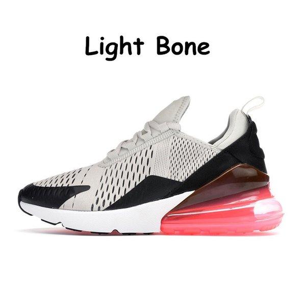 12 Lichtknochen