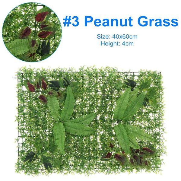 3 Peanut Grass