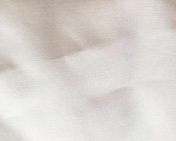 beige white with wolf fur