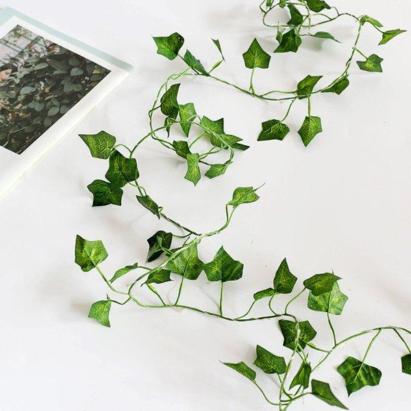 아이비 잎 온난 한 백색