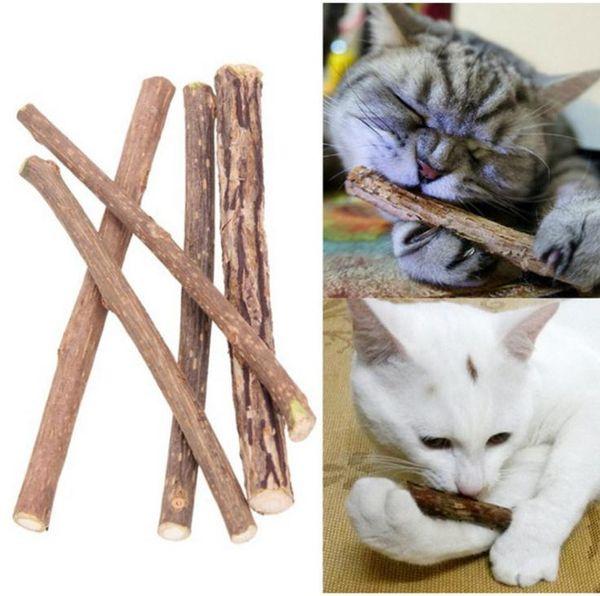 top popular 5Pcs bag Cat cleaning teeth Pure natural catnip pet cat molar Toothpaste stick silvervine actinidia fruit Matatabi cat snacks sticks SN4717 2021