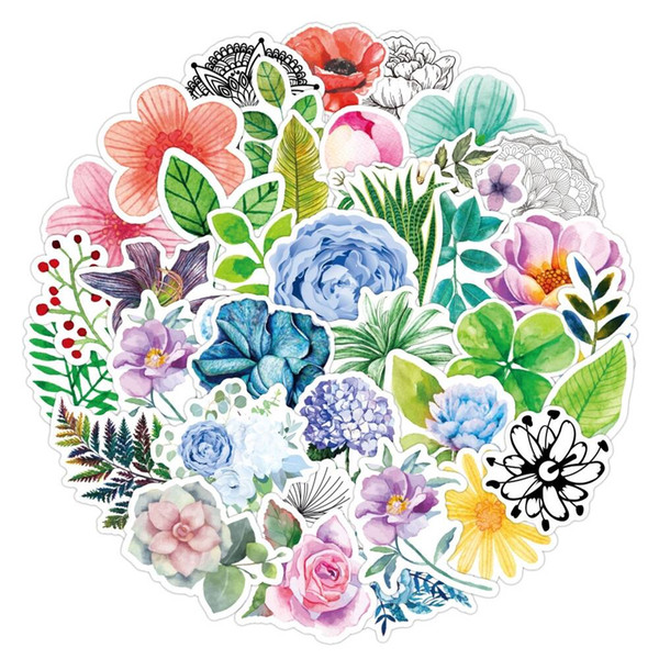 50Pcs Farbe Pflanze