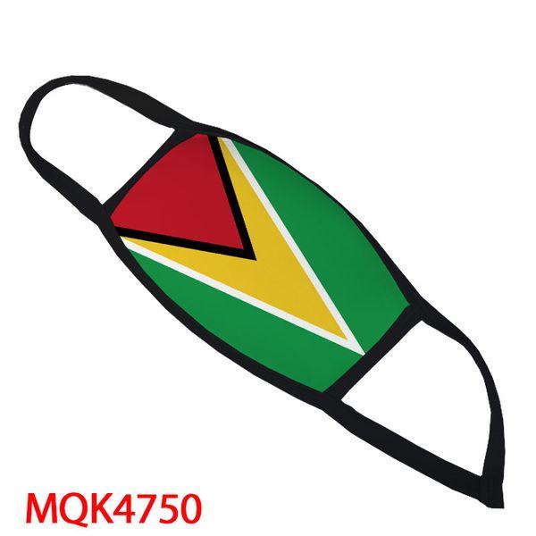 guyana bandiera