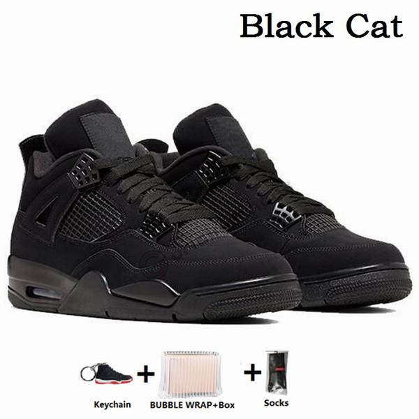 4S القطة السوداء