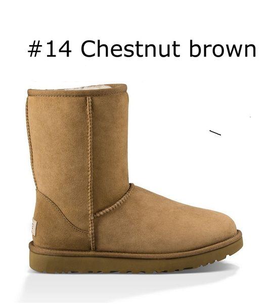 14 Chestnut brown classic short