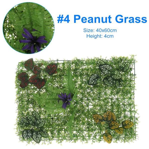 4 Peanut Grass