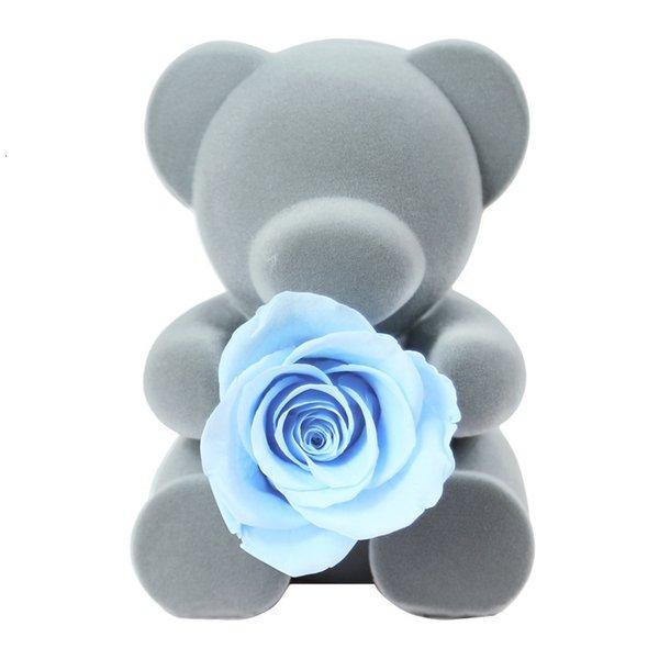 Bear Light Blue