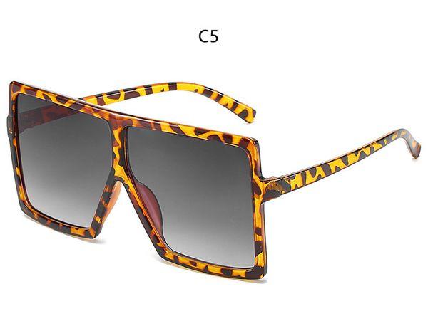 C5 leopard gray