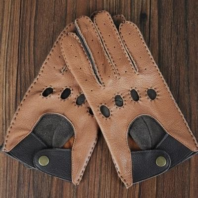 Hellbraun-m Anzug Palm 20-21cm