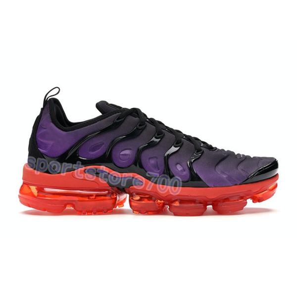 14. Voltage purple