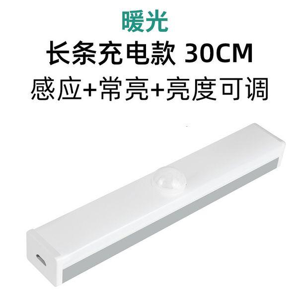 따뜻한 빛 스트립 충전 30cm (유도