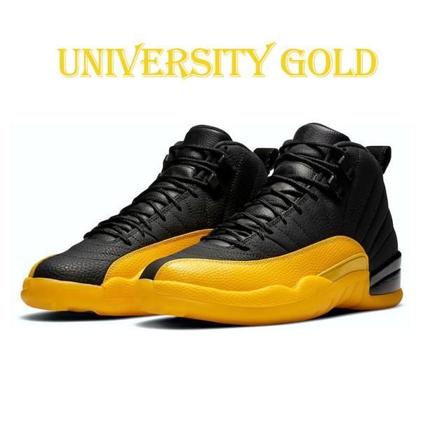 12s 7-13 University Gold