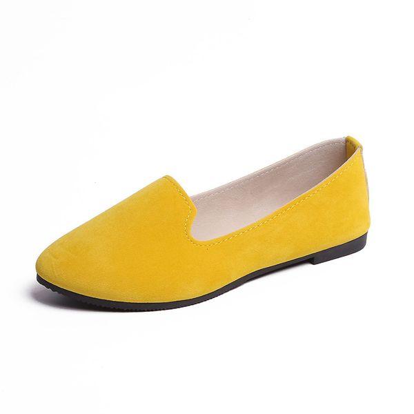 Albicocca gialla